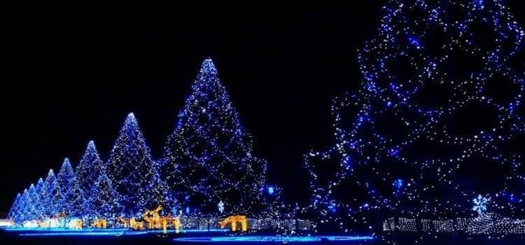 Karácsony özvegyen