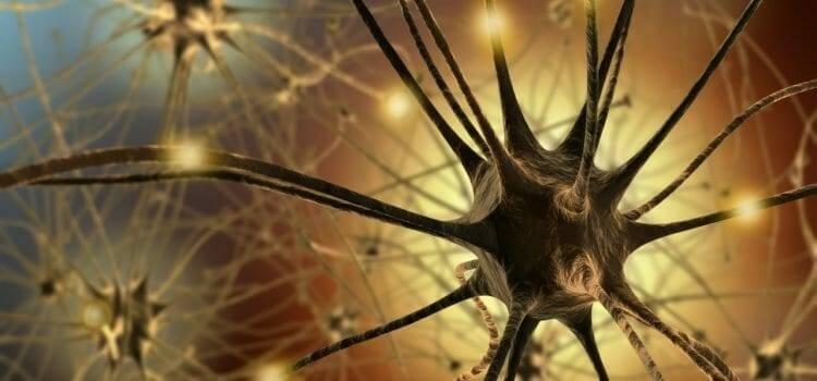 Neuropszichológia
