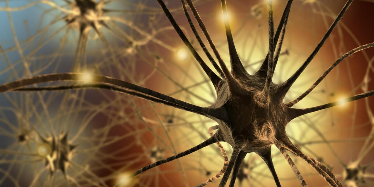 Budapesti pszichológus Neuropszichológia